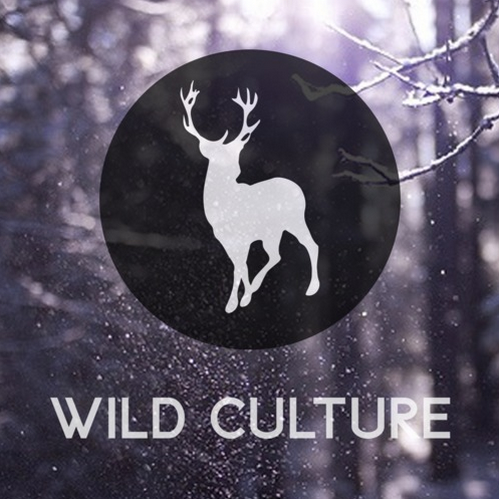IAATM KATERMUCKE: Japanese Wallpaper – Breathe In (Wild Culture Remix)