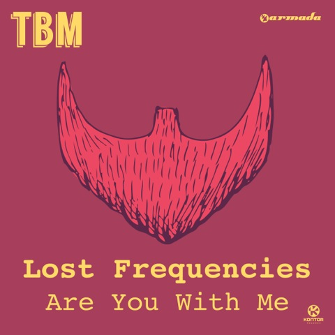 Lost Frequencies Armada