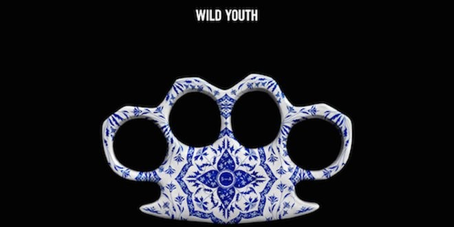 Steve Angello; Wild Youth