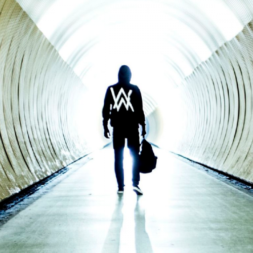 Alan Walker; Faded