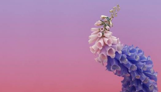 Flume – Skin (Album Review)