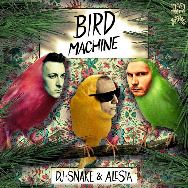 Bird machine dj snake alesia скачать.